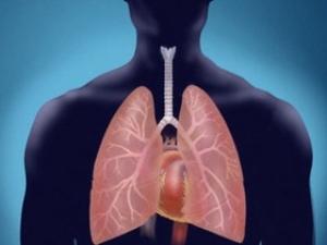 Najbolji prirodni lijekovi za čišćenje pluća
