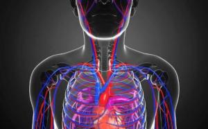 Lice će vam reći sve što trebate znati o zdravlju svoga srca