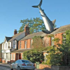 House with 25ft great white shark on its roof