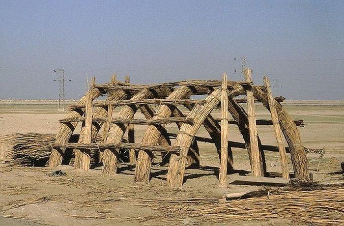 bataklik-araplari-bataklik-araplari-dicle-firat-1485948